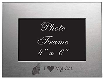 4x6 Brushed Metal Picture Frame - I Love My Cat